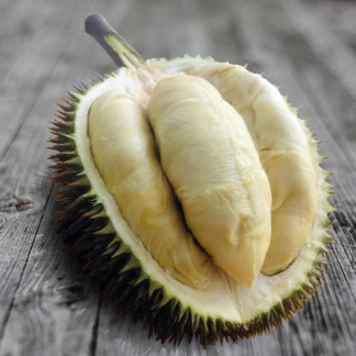golden phoenix Durian